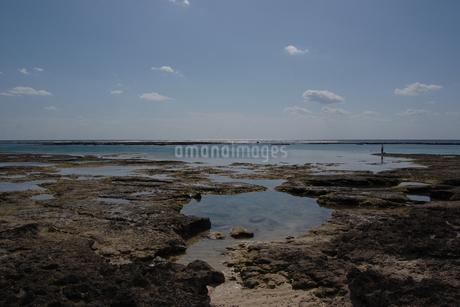 快晴の空と遠浅の潮だまりのある海岸の写真素材 [FYI02974156]