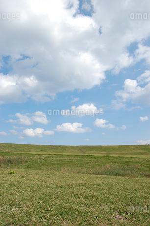 快晴の青空と緑の草原の写真素材 [FYI02974165]