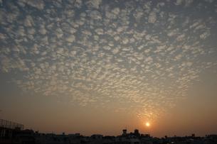 夕日の空にひつじ雲が広がっているの写真素材 [FYI02974179]