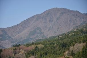 道志村より御正体山の写真素材 [FYI02974185]