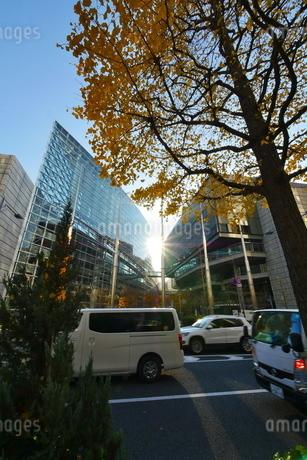 東京丸の内のお洒落なビル街の写真素材 [FYI02974211]