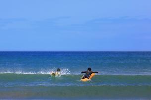 波が好きの写真素材 [FYI02974360]