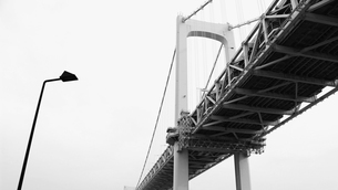 下から見上げた東京湾レインボーブリッジの写真素材 [FYI02974518]