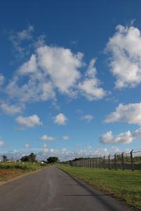 快晴の空とフェンス沿いの道の写真素材 [FYI02974587]