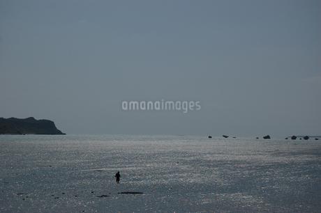 遠浅の海を歩く人の写真素材 [FYI02974594]
