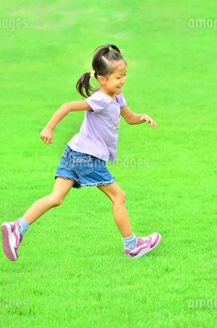 野原で走る女の子の写真素材 [FYI02974877]