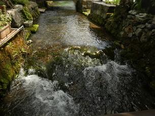 醒ヶ井地蔵川の流れ1の写真素材 [FYI02974978]