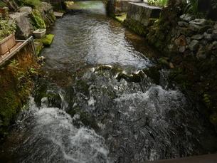 醒ヶ井地蔵川の流れ3の写真素材 [FYI02974980]