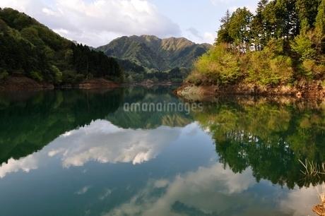春の穏やかな湖の写真素材 [FYI02974983]