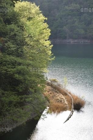 湖底に進む道の写真素材 [FYI02975000]
