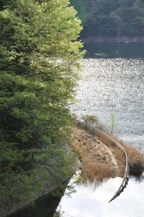 湖底に進む道の写真素材 [FYI02975044]