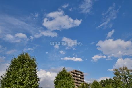 青空の下のみどりと建物の写真素材 [FYI02975072]