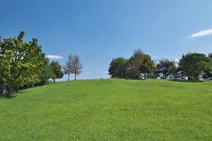 青空の下のみどりの丘の写真素材 [FYI02975074]