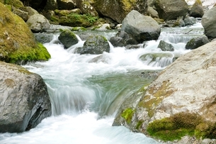 渓流の写真素材 [FYI02975139]