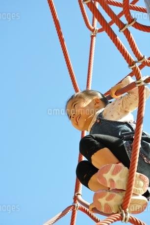 ザイルクライミングを楽しむ女の子の写真素材 [FYI02975157]
