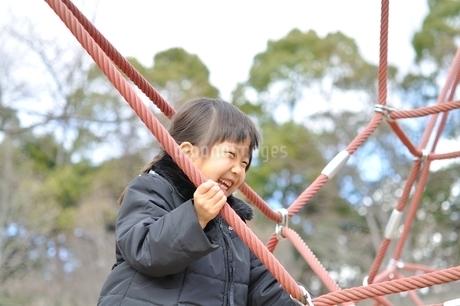 ザイルクライミングを楽しむ女の子の写真素材 [FYI02975169]