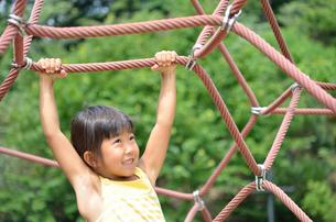 ザイルクライミングを楽しむ女の子の写真素材 [FYI02975177]