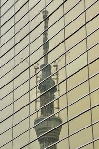 ビルに映る東京スカイツリーの写真素材 [FYI02975445]