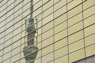 ビルに映る東京スカイツリーの写真素材 [FYI02975446]