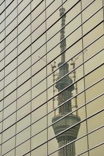 ビルに映る東京スカイツリーの写真素材 [FYI02975447]