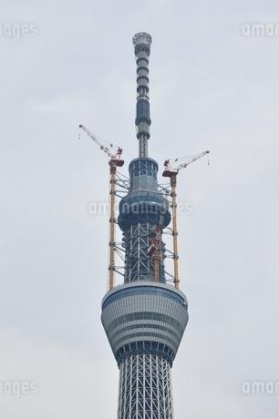 東京スカイツリーの写真素材 [FYI02975449]