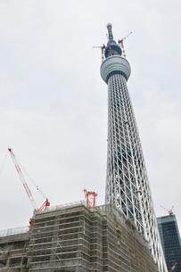 東京スカイツリーの写真素材 [FYI02975454]