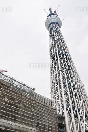 東京スカイツリーの写真素材 [FYI02975460]