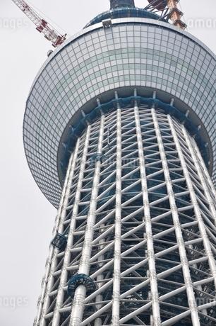 東京スカイツリーの写真素材 [FYI02975461]