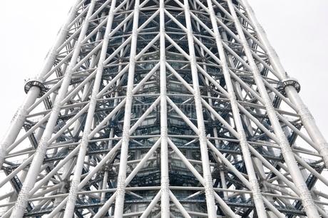 白い鉄骨の建物の写真素材 [FYI02975463]
