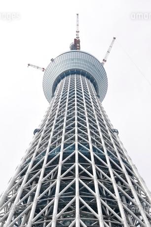 東京スカイツリーの写真素材 [FYI02975464]