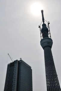 東京スカイツリーと太陽の写真素材 [FYI02975477]