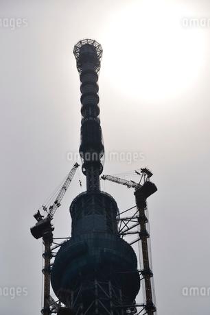 東京スカイツリーと太陽の写真素材 [FYI02975479]