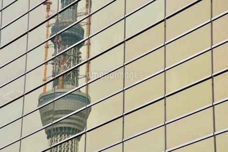 ビルに映る東京スカイツリーの写真素材 [FYI02975483]