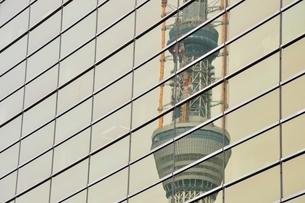 ビルに映る東京スカイツリーの写真素材 [FYI02975484]