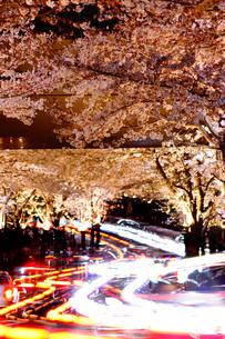 夜桜のトンネルの写真素材 [FYI02975670]