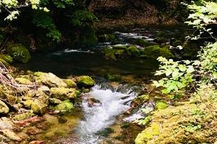醒井峡谷の写真素材 [FYI02975806]