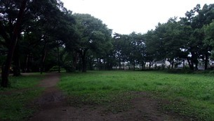 清瀬中央公園の写真素材 [FYI02975923]