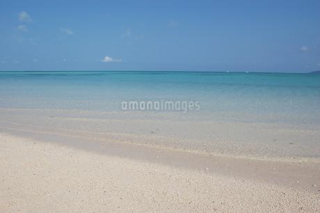 エメラルドグリーンの海と白い砂浜の写真素材 [FYI02975945]