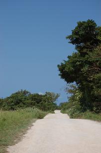 片側に草原のある未舗装の白い一本道の写真素材 [FYI02975981]