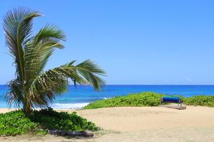 ハワイ オアフ島の青空とターコイズブルーの海の写真素材 [FYI02975987]