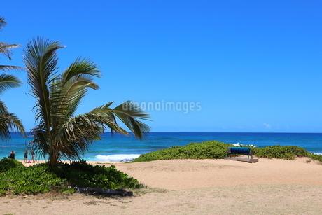 ハワイ オアフ島の青空とターコイズブルーの海の写真素材 [FYI02975989]
