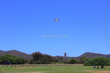 ハワイ オアフ島の青空と自然の風景の写真素材 [FYI02975991]