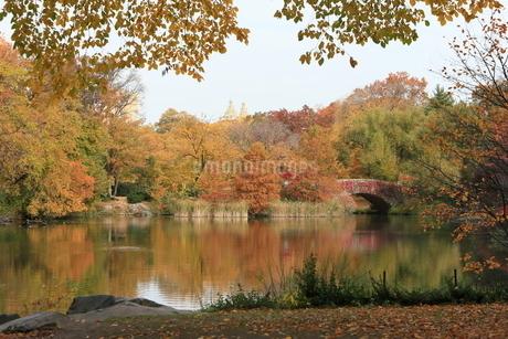 セントラルパーク ニューヨークの秋の写真素材 [FYI02976066]