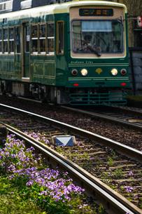 都電荒川線のイメージの写真素材 [FYI02976131]