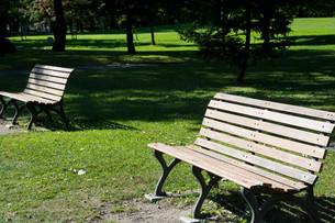 公園のベンチの写真素材 [FYI02976215]