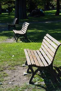 公園のベンチの写真素材 [FYI02976216]