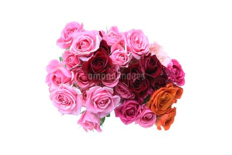 薔薇の花束の写真素材 [FYI02976350]