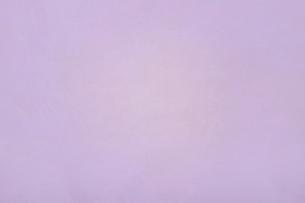 テクスチャ パステルカラーの写真素材 [FYI02976433]