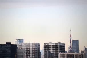 東京ベイエリアのマンション群と東京タワーの写真素材 [FYI02976483]