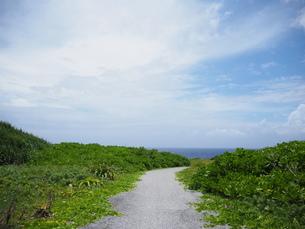 海への一本道の写真素材 [FYI02976500]